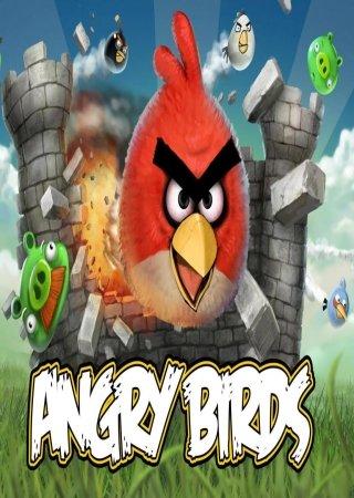 Angry Birds Seasons 2.2.0
