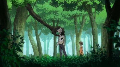В лес, где мерцают светлячки / В лесу мерцания светлячков
