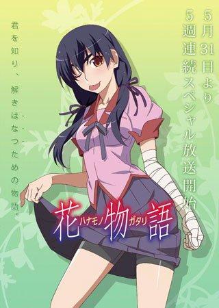 Истории цветов OVA (5 из 5)