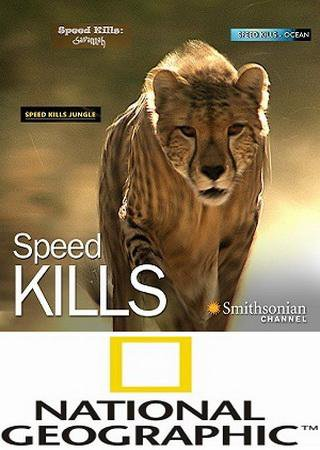 National Geographic. Убийственная скорость