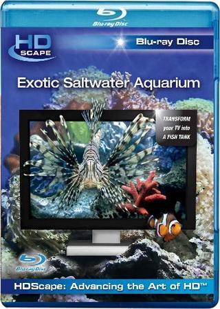 HDScape: Экзотический морской аквариум