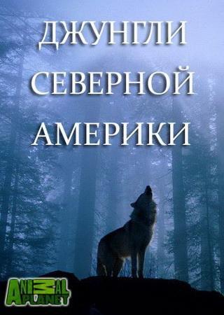 Animal Planet. Джунгли Северной Америки