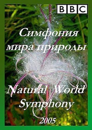 Симфония мира природы