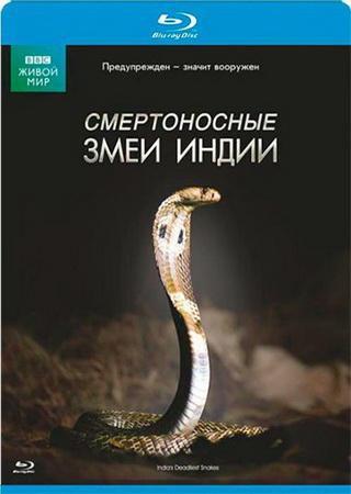 BBC: Мир природы. Смертоносные змеи Индии