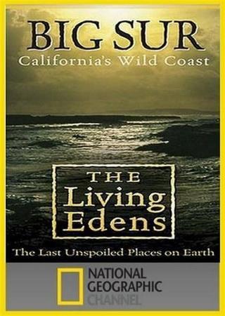 Первозданная природа: Дикое побережье Калифорнии
