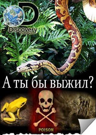 Discovery. А ты бы выжил? (1 сезон)
