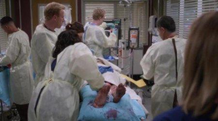 Анатомия страсти (12 сезон)