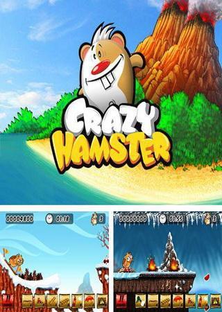 Crazy Hamster FULL