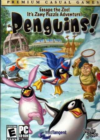 Пингвины!