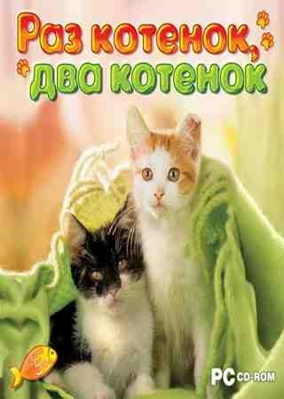Раз котенок, два котенок