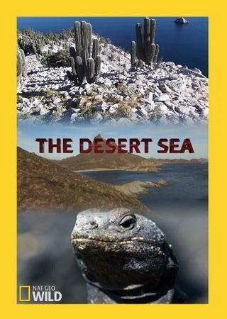 Пустынное море