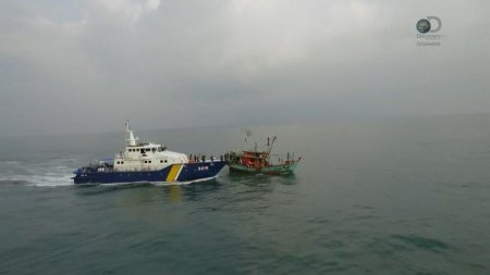 Защитники океана