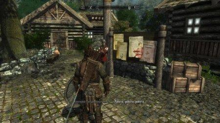 The Elder Scrolls V: Skyrim - Enderal: The Shards of Order