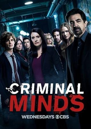 Мыслить как преступник (13 сезон)