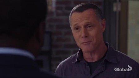 Полиция Чикаго (5 сезон)