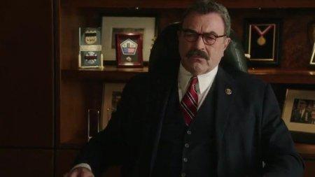 Голубая кровь (8 сезон)